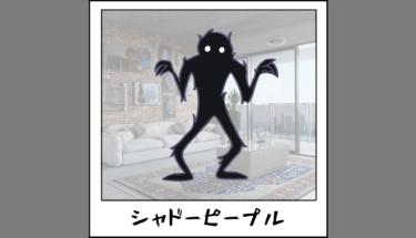 【未確認生物図鑑014】怪奇現象シャドーピープル